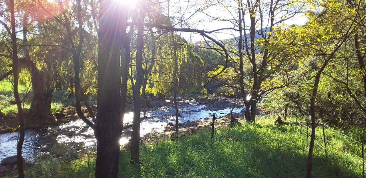 Alpine Swift Trails autumn scenery forest